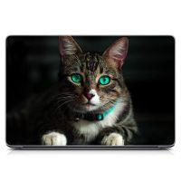 """Универсальная наклейка на ноутбук 15.6""""-13.3"""" Зеленоглазый кот Матовый 380х250 мм"""