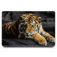 Виниловый стикер для ноутбука Тигр Матовый