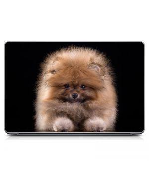 """Универсальная наклейка на ноутбук 15.6""""-13.3"""" Щенок Матовый 380х250 мм"""