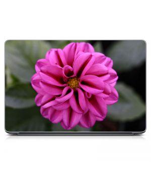 Наклейка на ноутбук - Цвет Фуксии