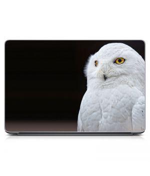 Наклейка на ноутбук - White Owl