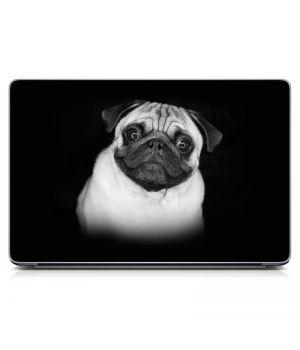 Наклейка на ноутбук - Мопс