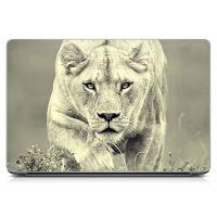 """Универсальная наклейка на ноутбук 15.6""""-13.3"""" Lioness 380х250 мм"""