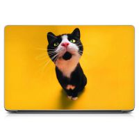 Наклейка на ноутбук - Nosey Cat