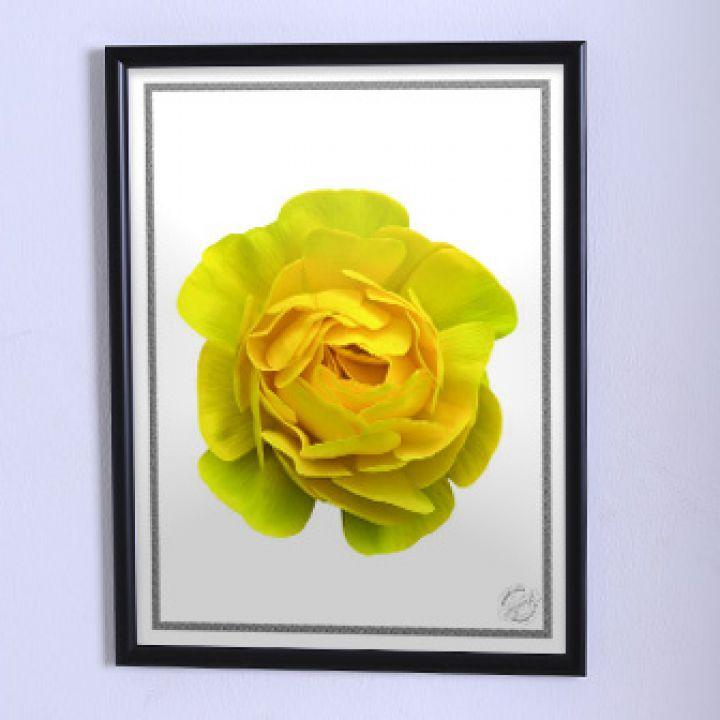 Постер для дома Крупный жёлтый цветок