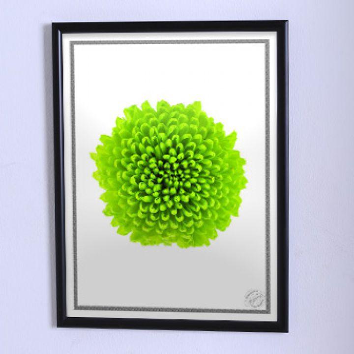 Постер для будинку Велика зелена квітка
