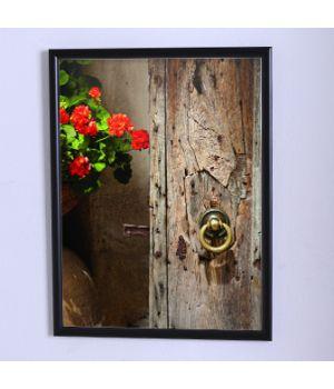 Постер на стену Цветы возле двери