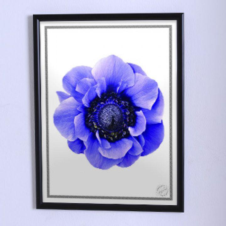 Постер для будинку Велика синя квітка