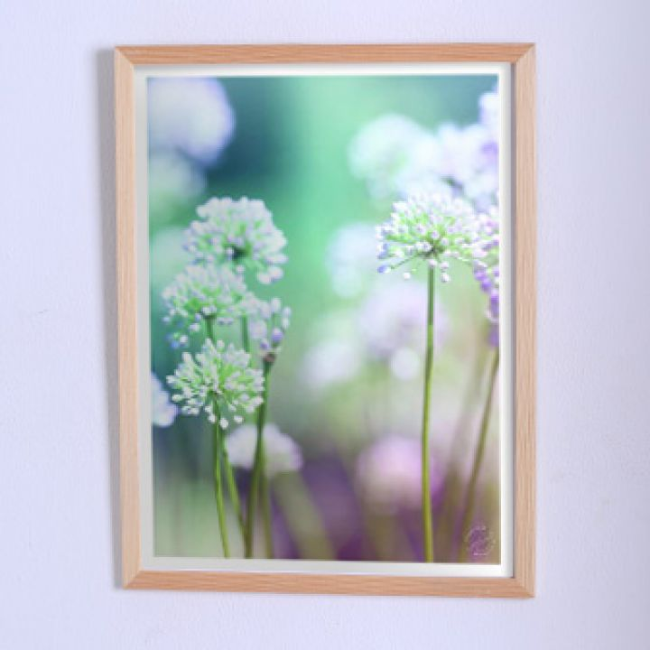 Постер для дома Нежные цветы