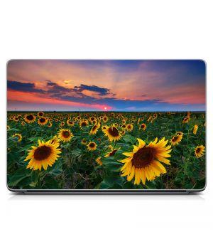 Наклейка на ноутбук Соняшники Матова