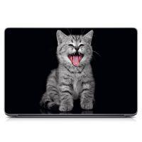 Наклейка на ноутбук Котик Матовая