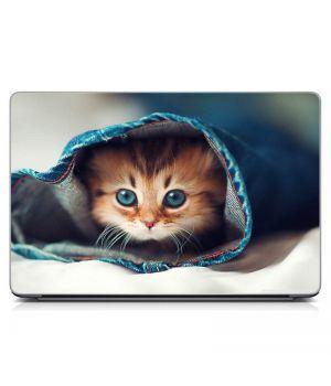 """Универсальная наклейка на ноутбук 15.6""""-13.3"""" Котенок в укрытии Матовая 380х250 мм"""