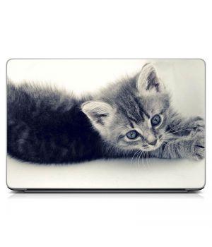 """Універсальна наклейка для ноутбука 15.6""""-13.3"""" Сіре кошеня Матова 380х250 мм"""