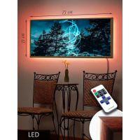 LED Картина 73x33см Тайна леса