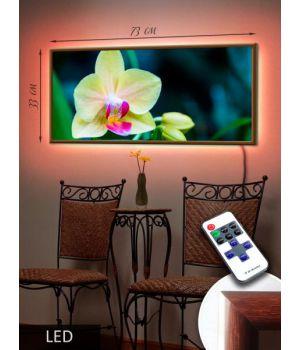 LED Картина 73x33см Белая орхидея