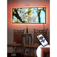 LED Картина 73х33см Сакура біла