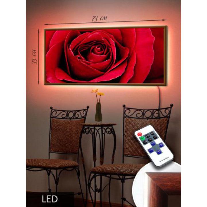 LED Картина 73x33см Макро роза