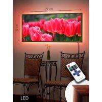 LED Картина 73x33см Голландские тюльпаны