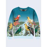 Чоловічий світшот Exotic parrots
