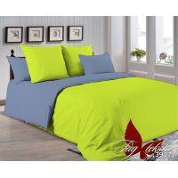 Двуспальный Комплект постельного белья P-0550(3917)
