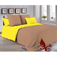 Двуспальный Комплект постельного белья P-1323(0643)